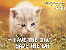 Save the cat.jpg