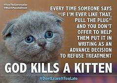 Kitten ADRT 2.jpg