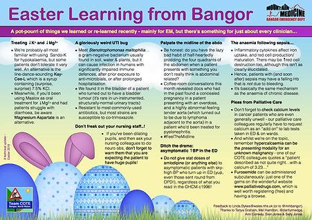 Bangor Bog Blog Easter 2018.jpg