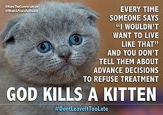 Kitten ADRT 1.jpg