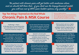 Chronic pain MSK Infographic.jpg