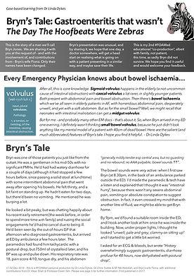 Bryn Story v1.02.jpg