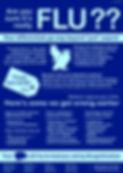 Flu infographic v3.jpg