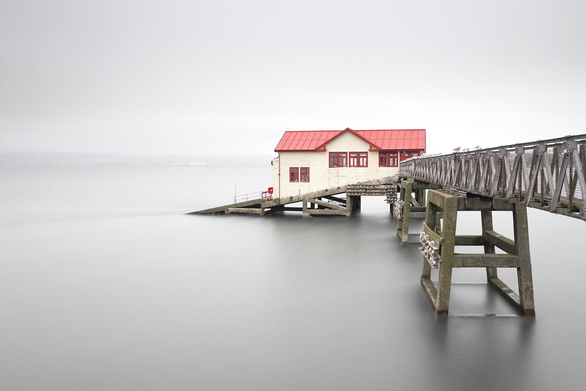 MUTED MUMBLES - HOME - FLIP - 1920px