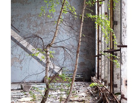 Chernobyl: Reclamation