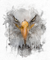 aguia.png