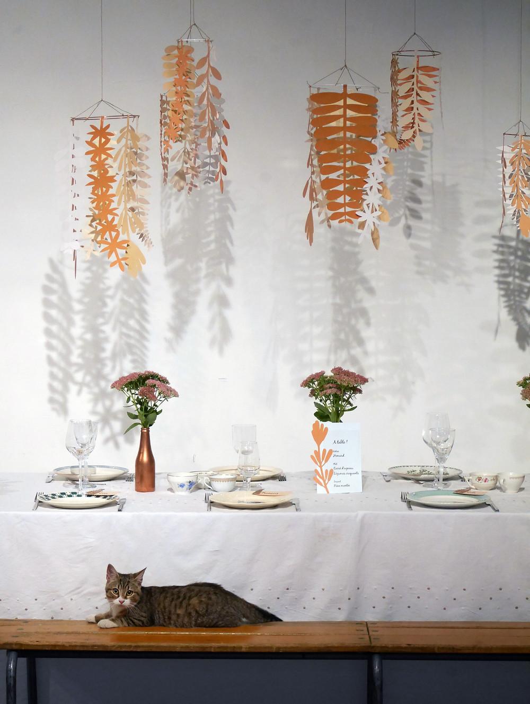Table de mariage et chat mignon !