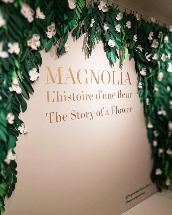 Exposition Magnolia Fragonard