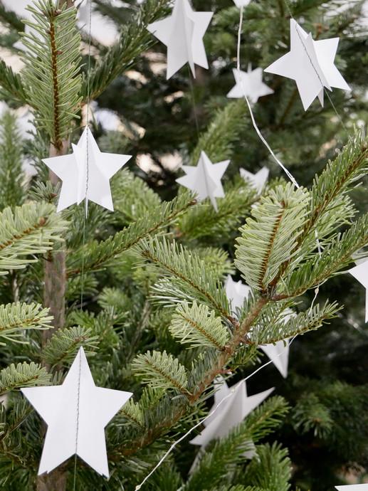 Guirlandes d'étoiles - CSF Noël 2019