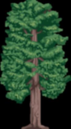 Дерево-1.png