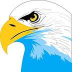 eagle face Gibbs colors - clipart.jpg