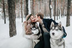 Winter wedding with husky