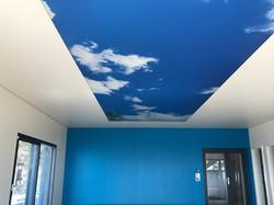 Plafond Tendu Barrisol Suisse