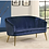 Thumbnail: Navy and Gold Settee