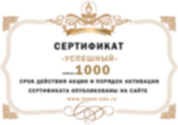 СЕРТИФИКАТ УСПЕШНЫЙ.jpg
