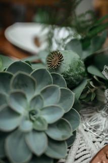 giant succulents wedding flowers