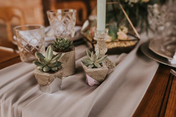 concrete succulent pots