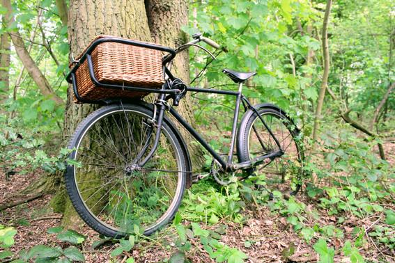 woodland wedding vintage bike hire bicycle