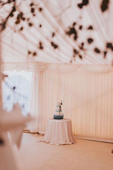 blue wedding cake marquee