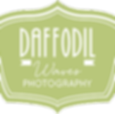 Daffodil Waves Photography