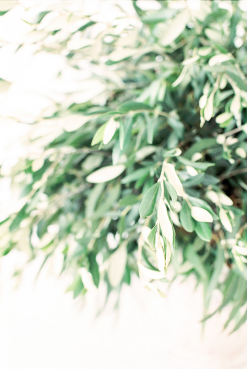 olive foliage greenery arrangement
