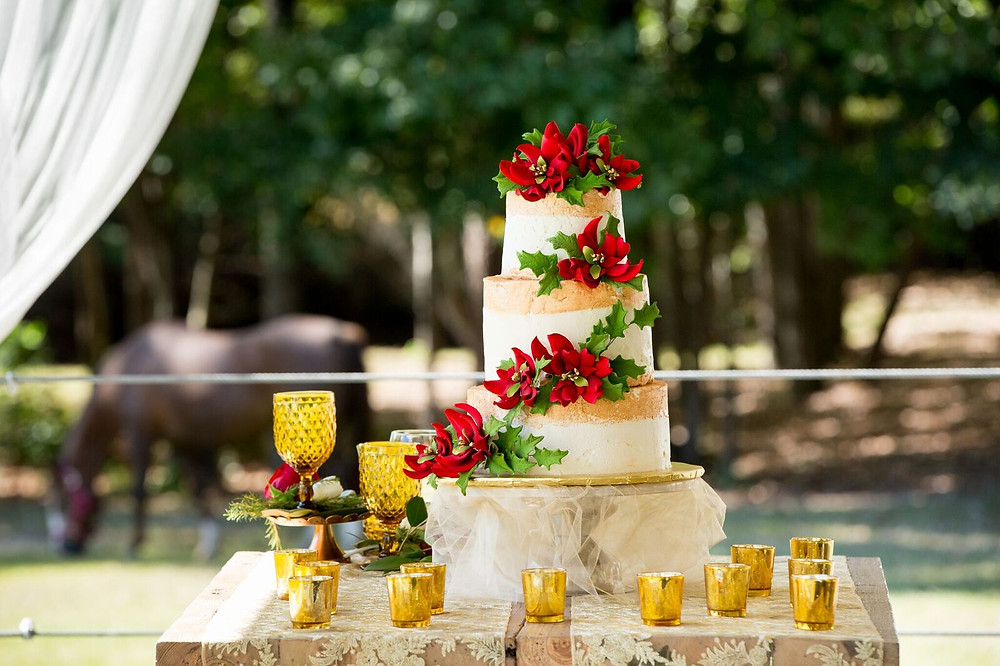 Rustic Christmas Wedding cake table Ideas