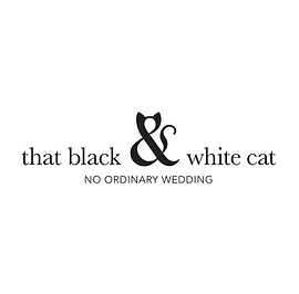that black and white cat