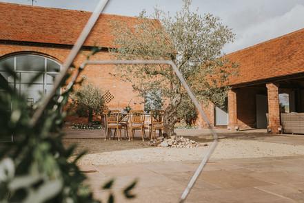 Swallows nest barn courtyard olive tree