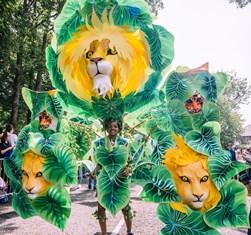 Amara lion 2