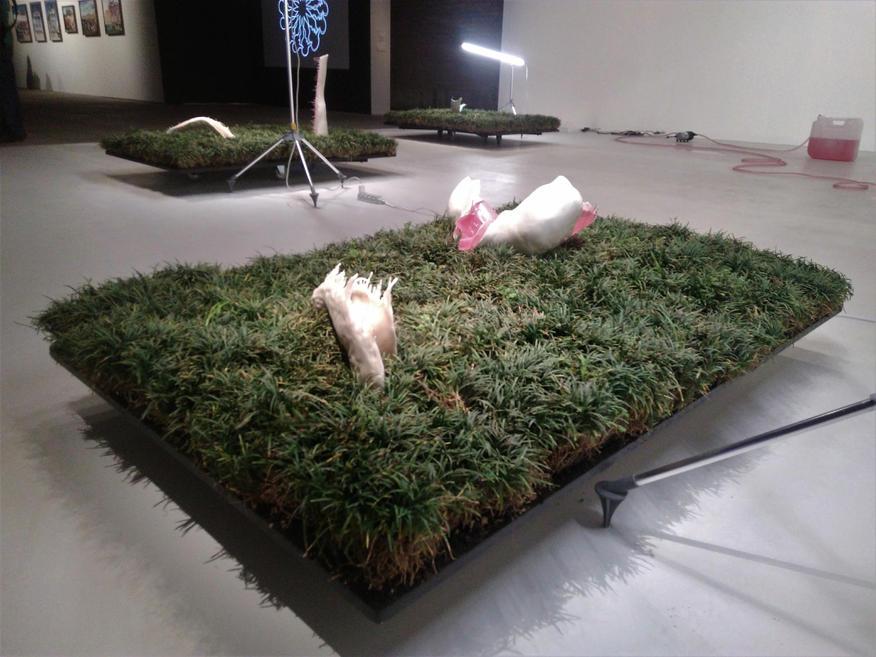 20º Festival de Arte Contemporânea Sesc_Videobrasil
