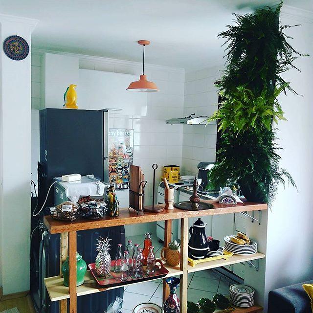 Coluna de plantas_ samambaias diversas e renda francesa. ._Pequenos jardins para pequenos espaços._.jpg