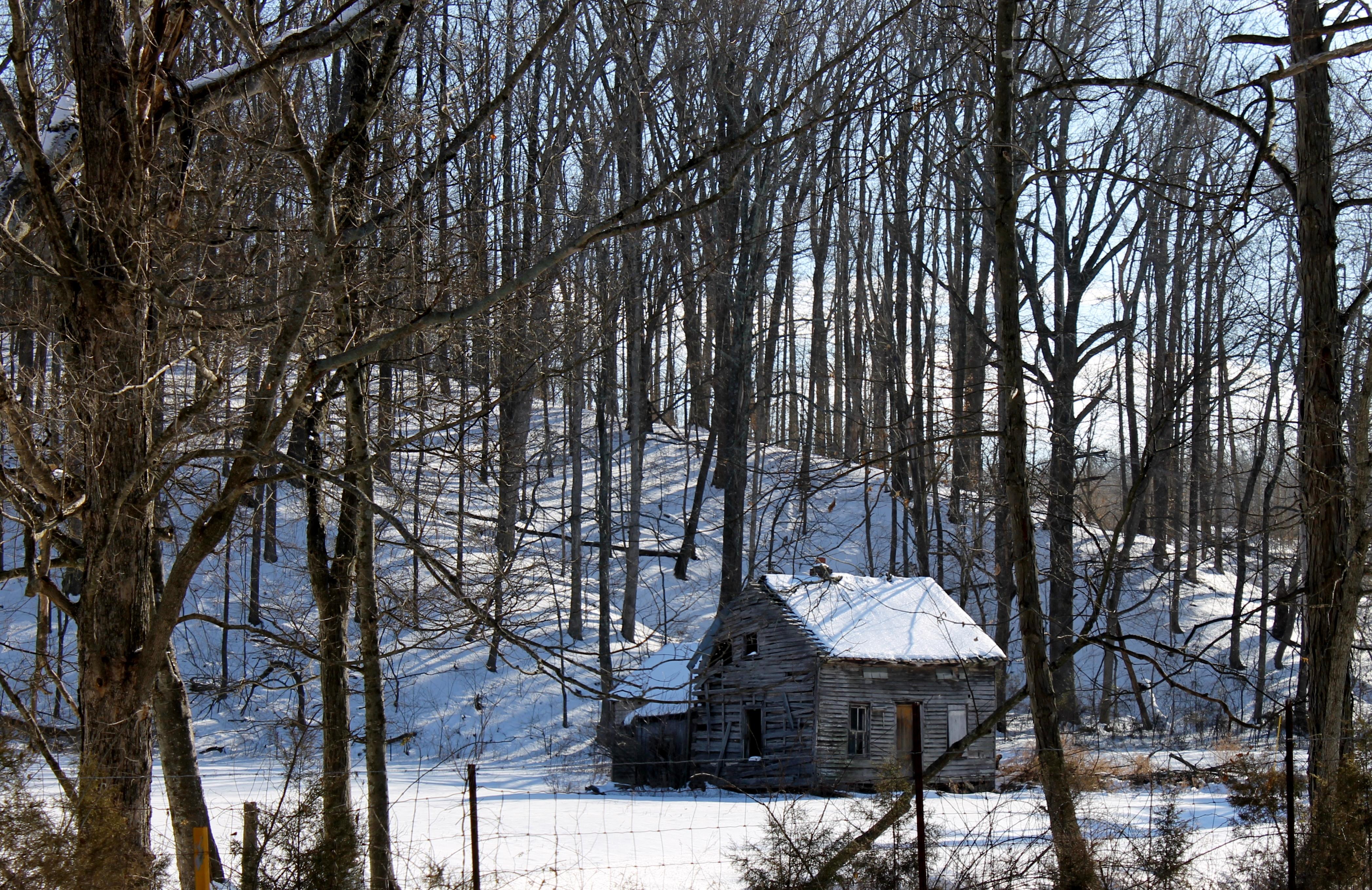 Winter's Last Stop