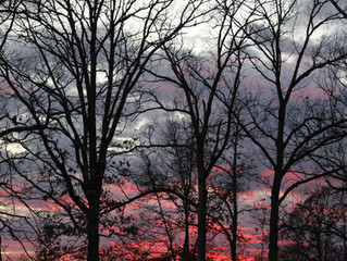Th twilight of December