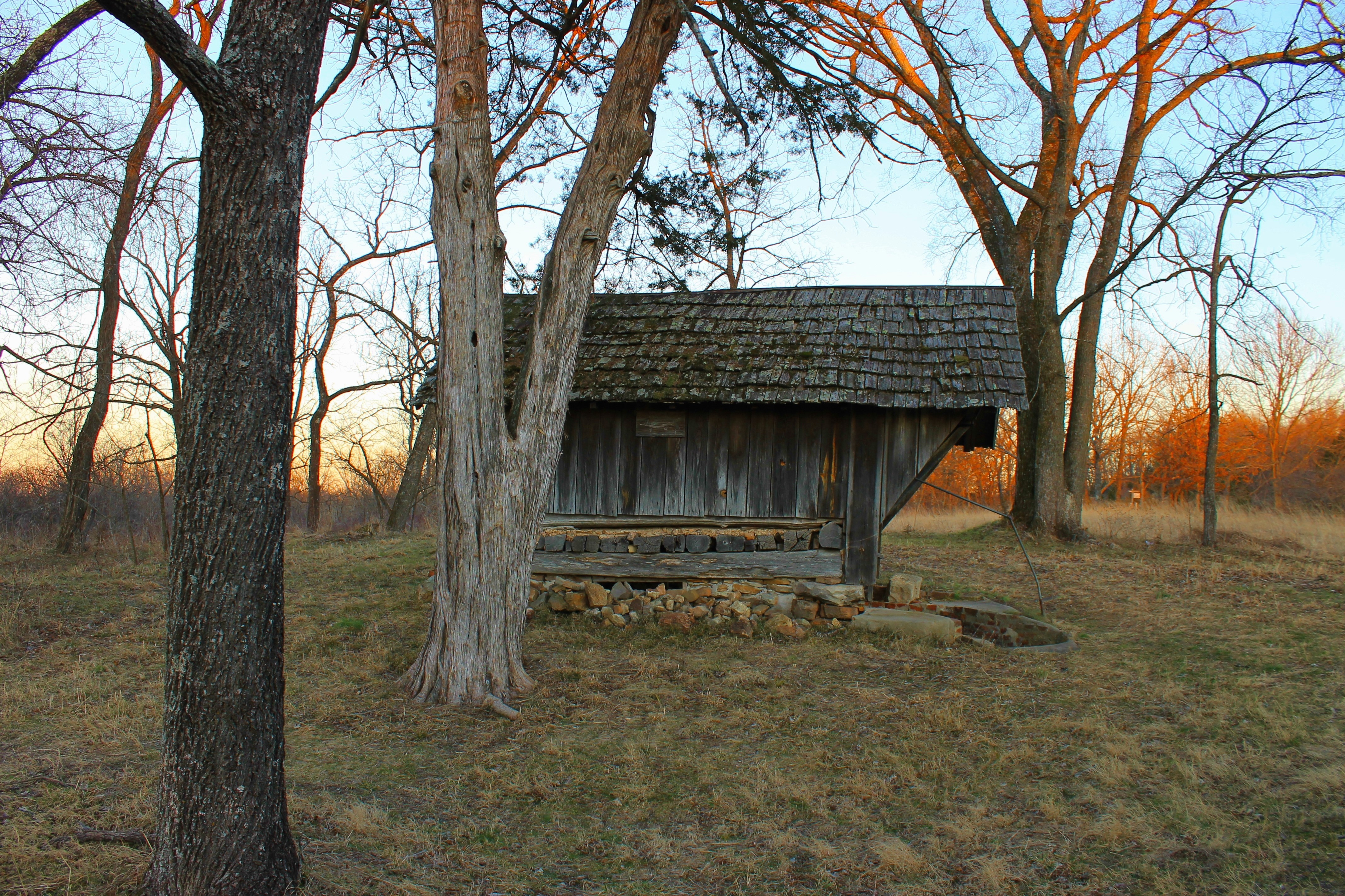 Root Cellar, After Christmas