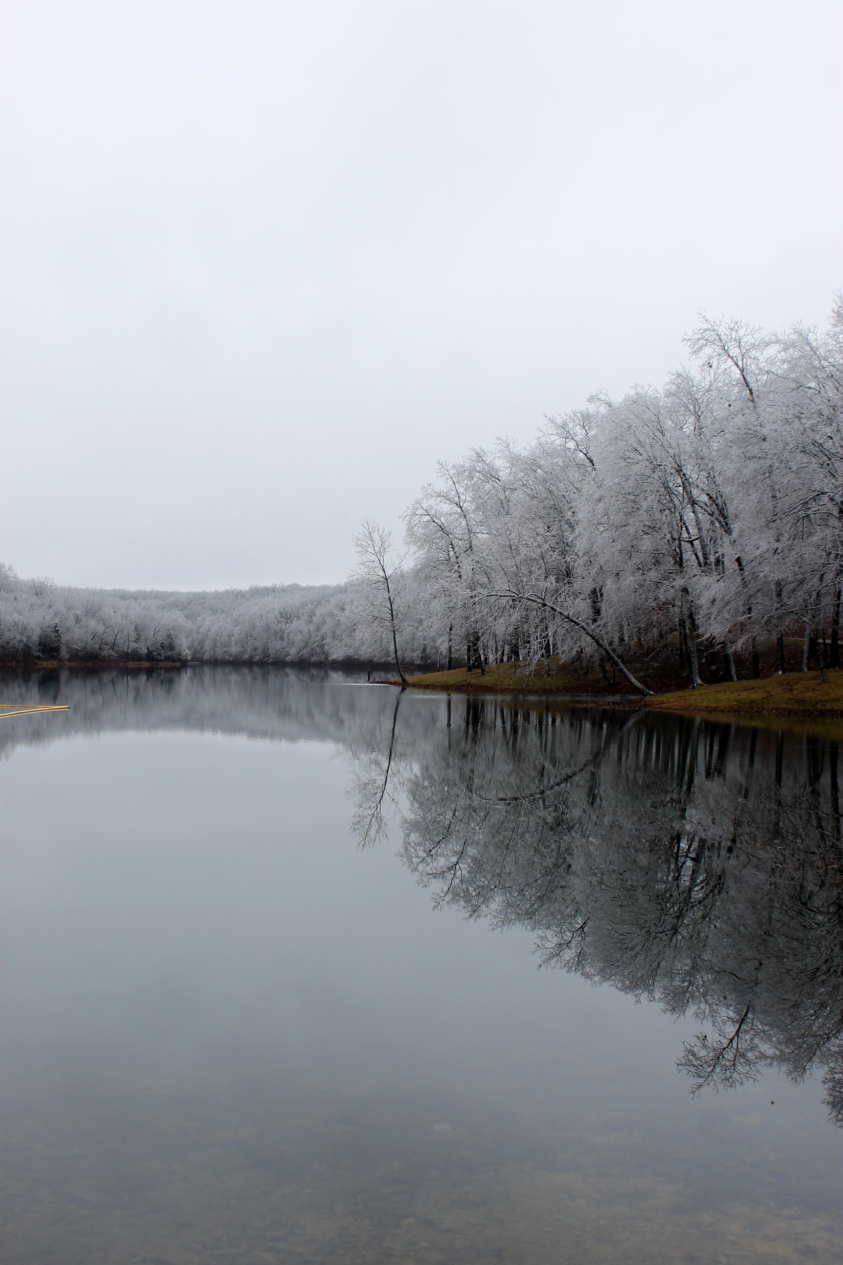 Ice Storm I