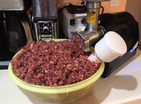 Raw Feeding and Alternatives