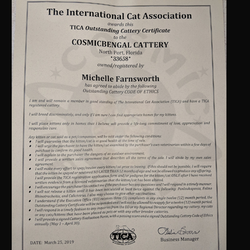 TICA Outstanding Cattery