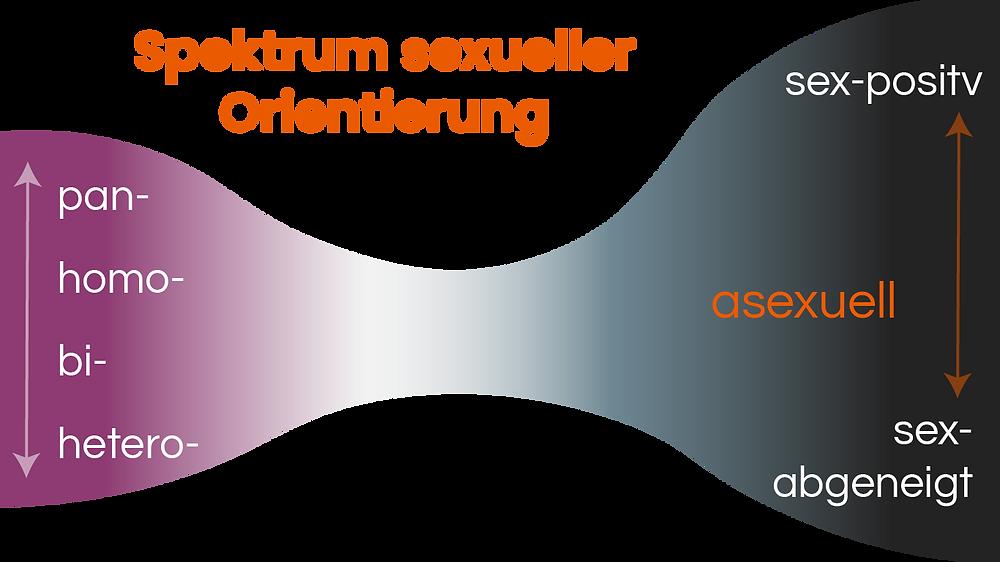 Spektrum sexueller Orientierung graphisch dargestellt