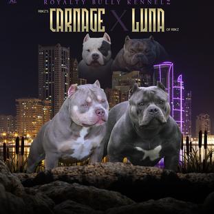 Carnage x Luna