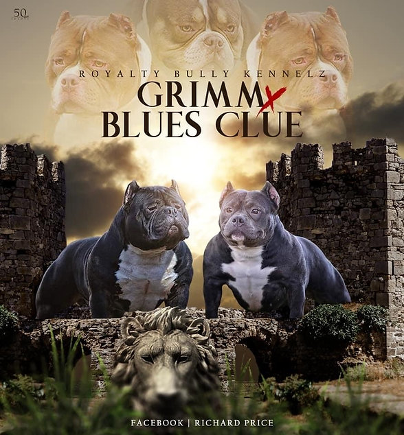 grimm x blues clues.jpg