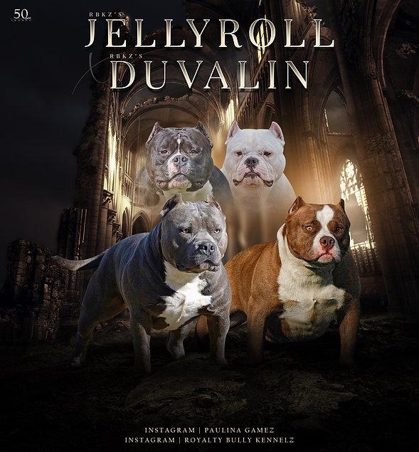 jelly x duvalin banner.jpg