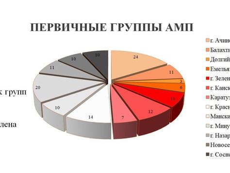 Первичные группы АМП