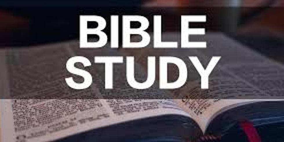 Sermon Bible Study