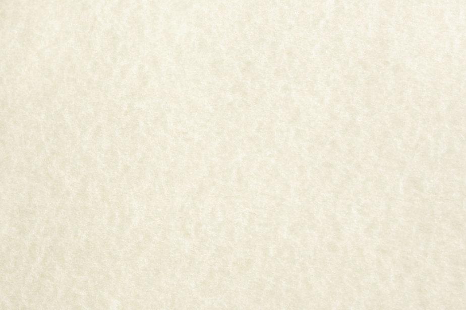 parchment-paper-light-texture.jpg