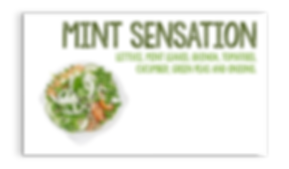 MINT SENSATION WEB.png