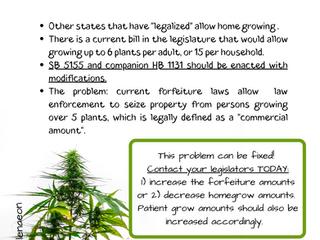 LEGALIZE HOME GROW!