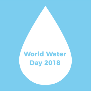 combining image and type: world water day posters
