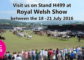 Patchwork at the Royal Welsh Show