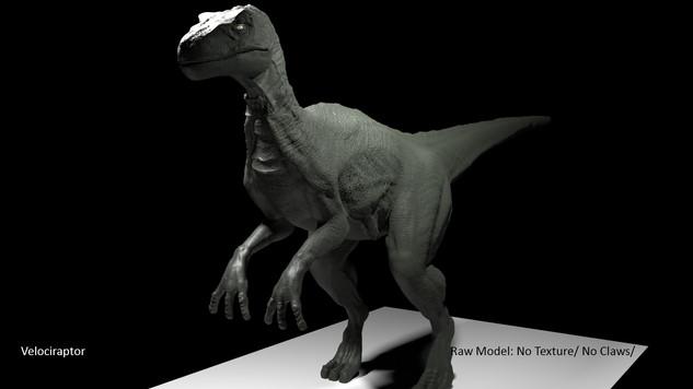 Raptor body