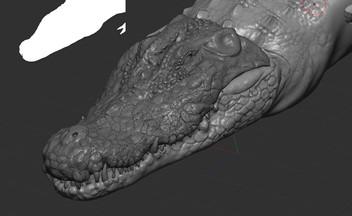 head gator.jpg